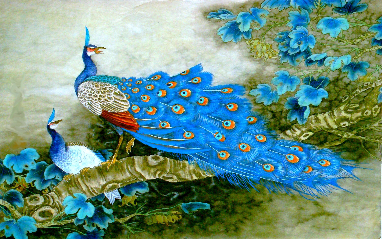 hd divine birds wallpaper | birds | pinterest | bird, bird