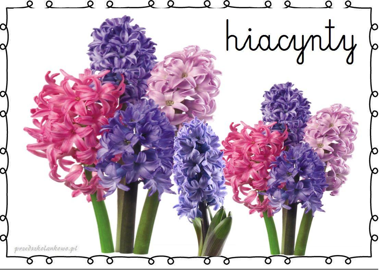Wiosenne Kwiaty Plansze Zestaw 1 Przedszkolankowo Spring Flowers Spring Activities Flowers