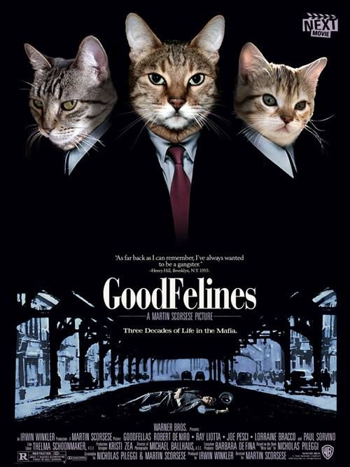 Nothing But Kitty Cats With Images Cat Posters Cat Movie Cats