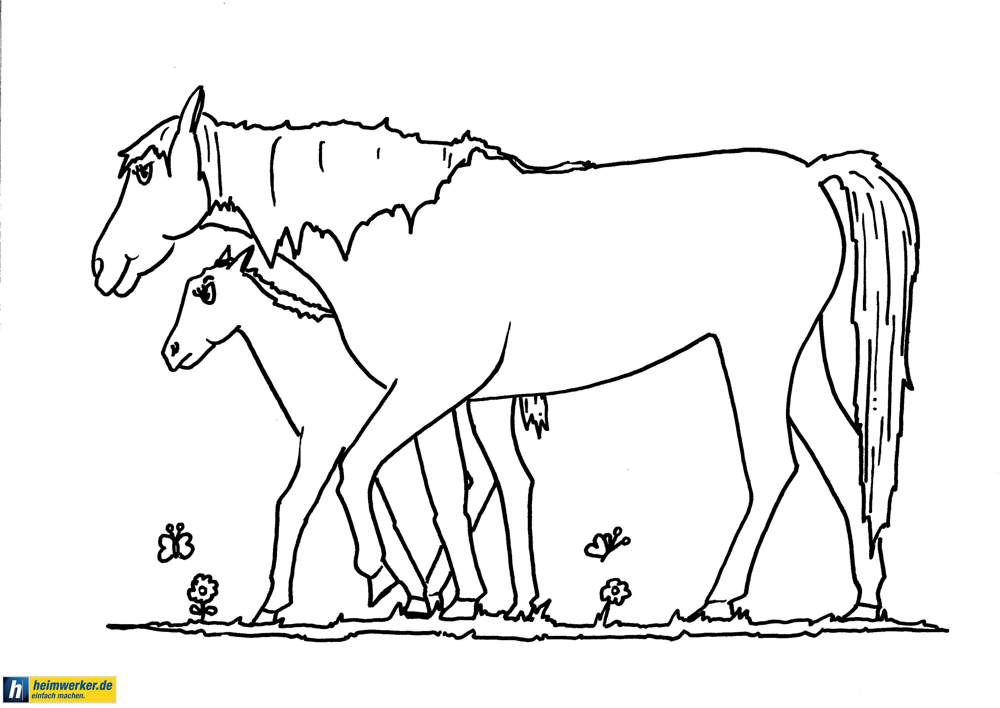 Ausmalbilder Pferde Gratis - Ausmalbilder Pferde Kostenlos Zum ...