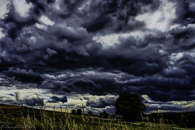 "Photo ""IMG_5651_HDR"" by danielderocker Bastogne region Belgium"