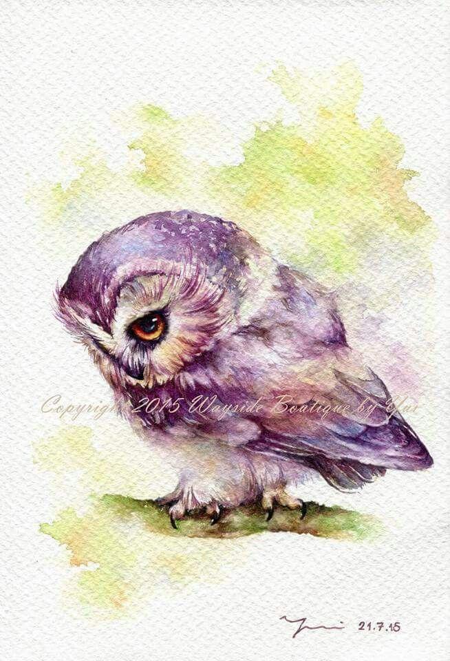 Chouette Aquarelle De Hibou Oiseau En Aquarelle Peintures De Hibou