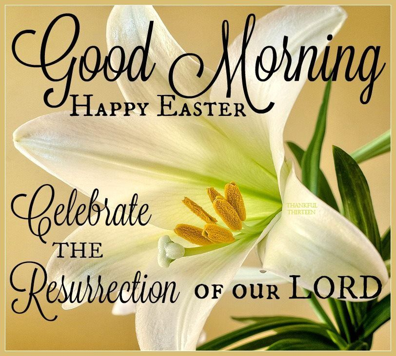 Good Morning Happy Easter Celebrate The Resurrection