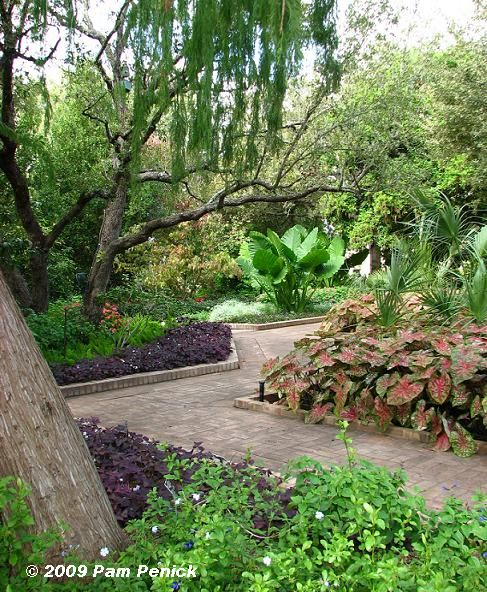 San Antonio Botanical Garden With Images Botanical Gardens