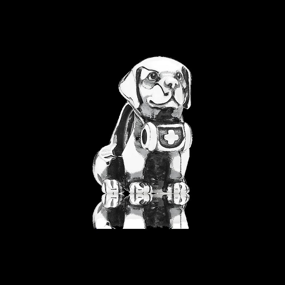 charms chien pandora