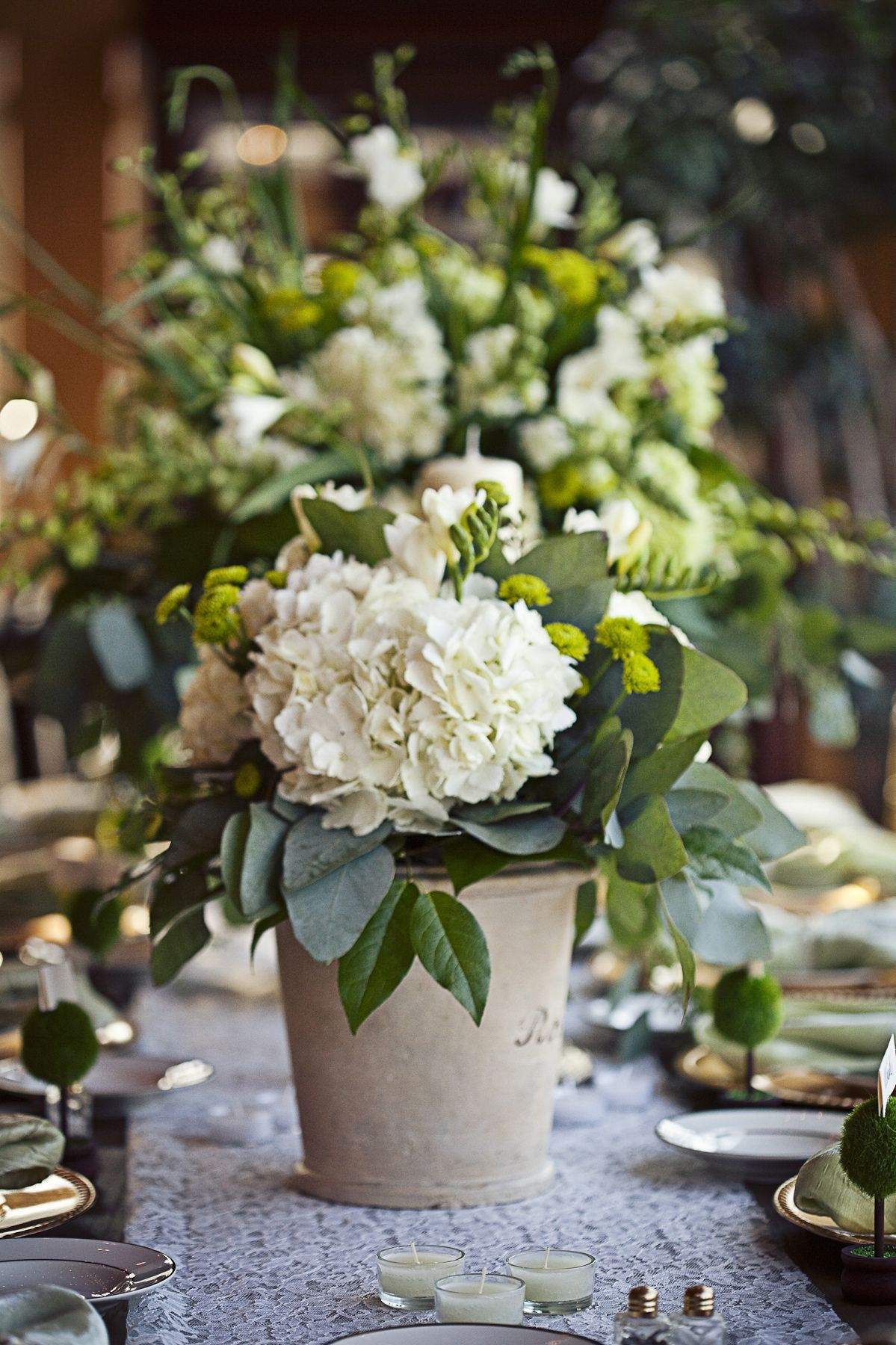 Gorgeous green potted hydrangea centerpiece photos by