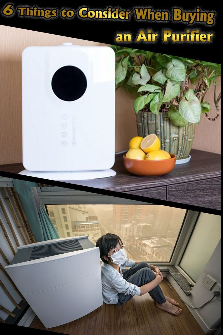 6 Things to Consider When Buying an Air Purifier for Home