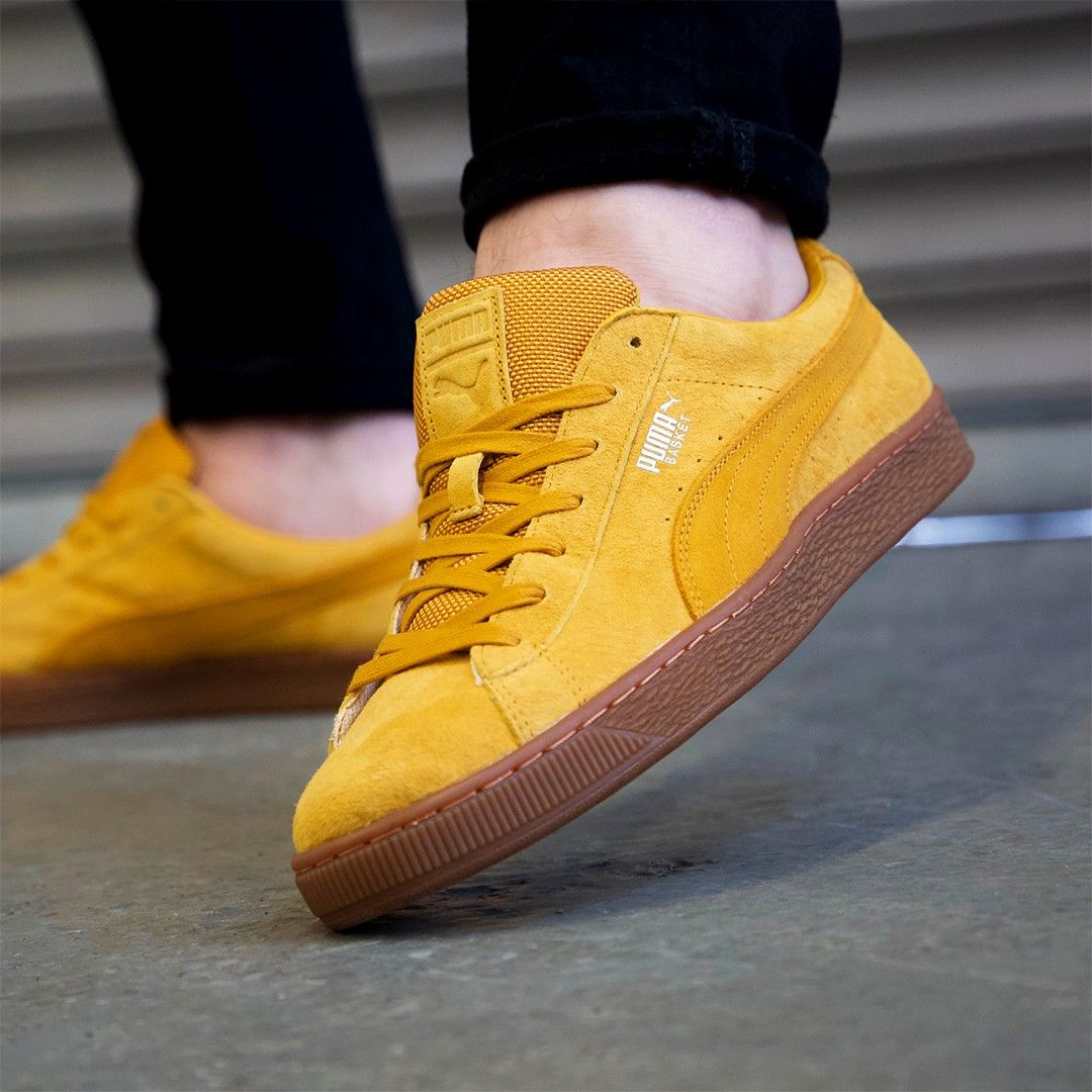 m and m direct puma trainers