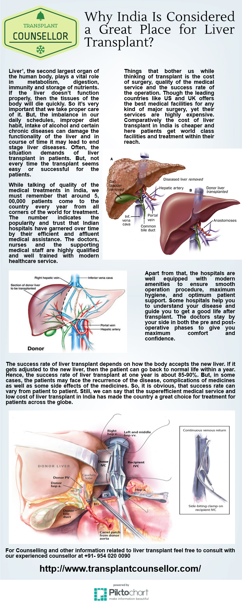Liver The Second Largest Organ Of The Human Body Plays A Vital