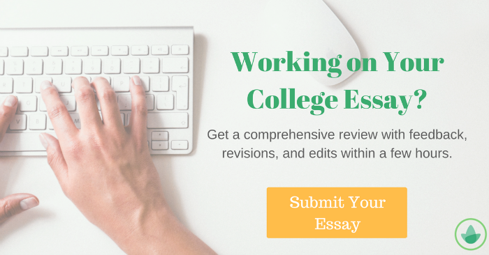 Common application essay length