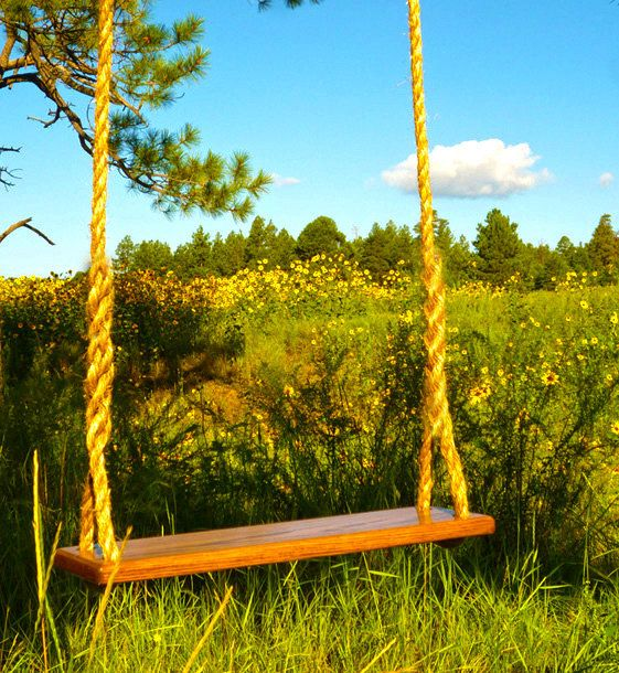 Extra Wide Wood Rope Swing - Made in USA - 25 ft.. $122.25, via Etsy.