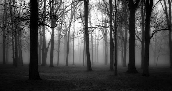 Tolle schwarz weiß Fotografie von Derek Toye