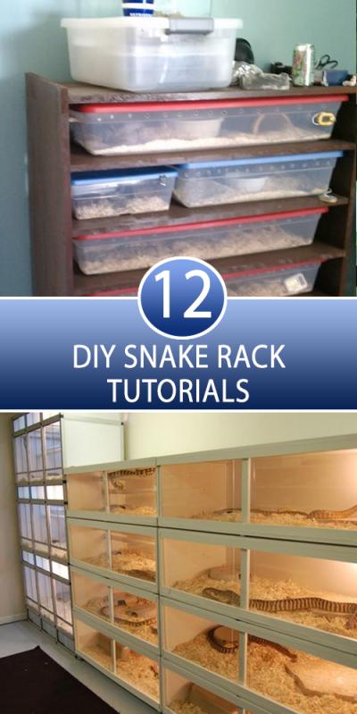 12 Diy Snake Rack Tutorials 10 So Peachy Diy Reptile Snake Cages Reptile Enclosure