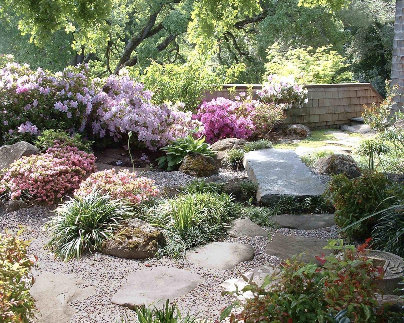 Rhododendrons With Images Rock Garden Design Rock Garden