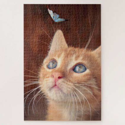 Cute ginger kitten face watching blue butterfly jigsaw puzzle | Zazzle.com
