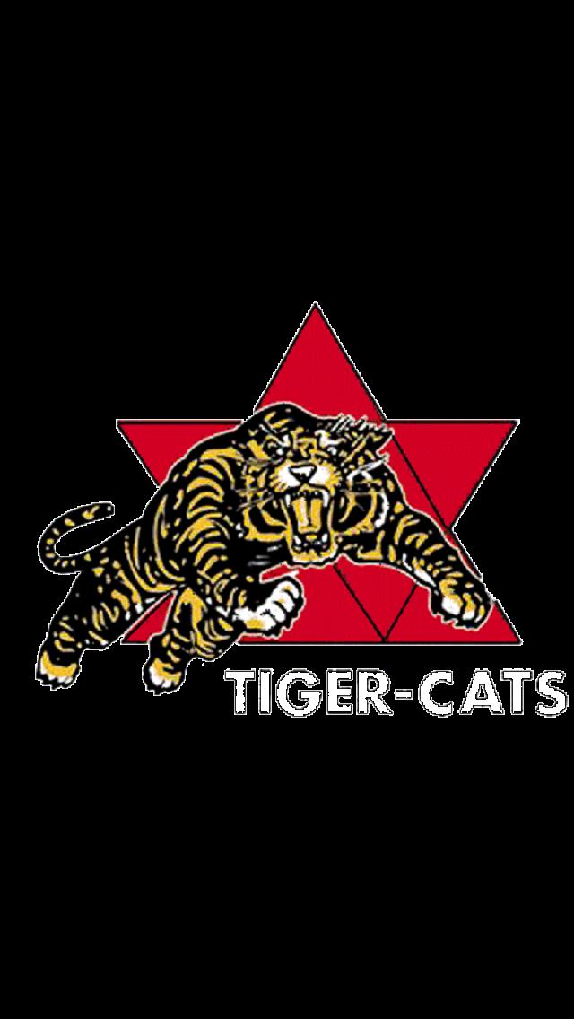 3 Hamilton Tiger Cats 1967 Canadian Football League Canadian Football Football Helmets