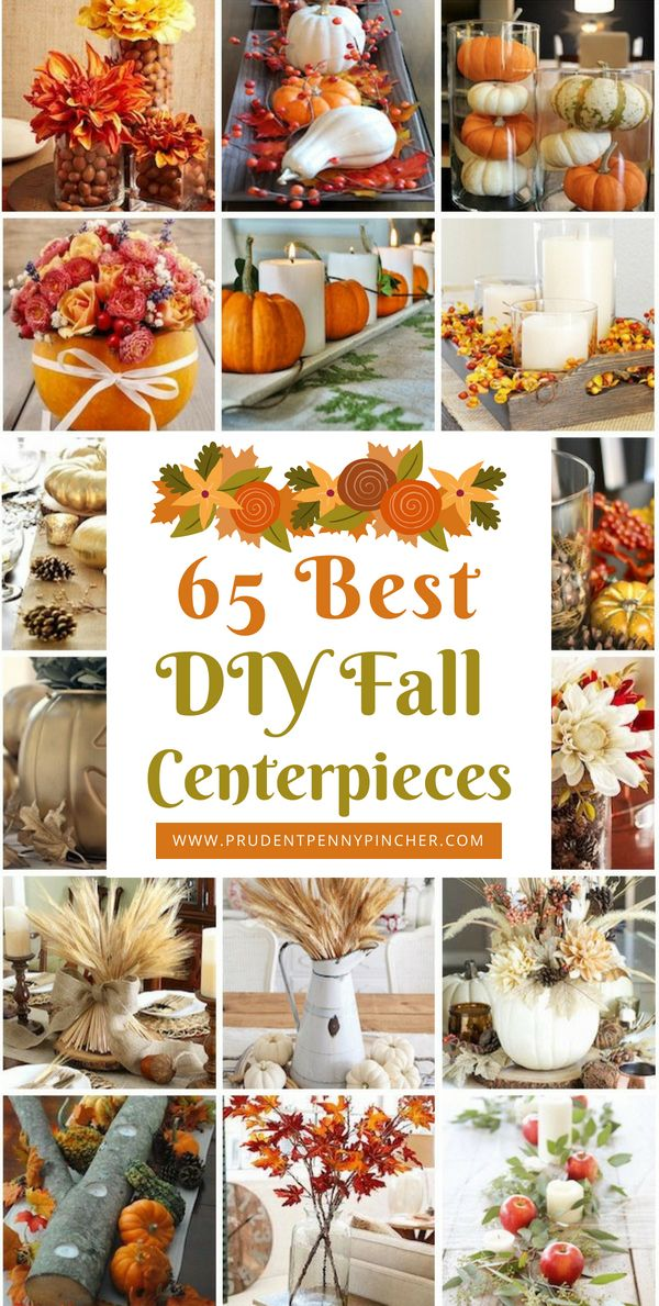 65 Best DIY Fall Centerpieces images