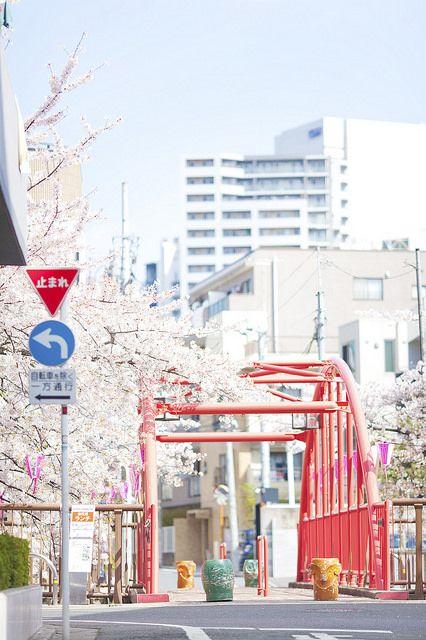 "fluoric: ""TOKYO NAKAMEGURO by linton!! on Flickr. """