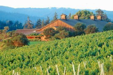 Image from http://wineries.findthebest.com/sites/default/files/1302/media/images/t2/Roederer_Estate_3_233485.jpg.