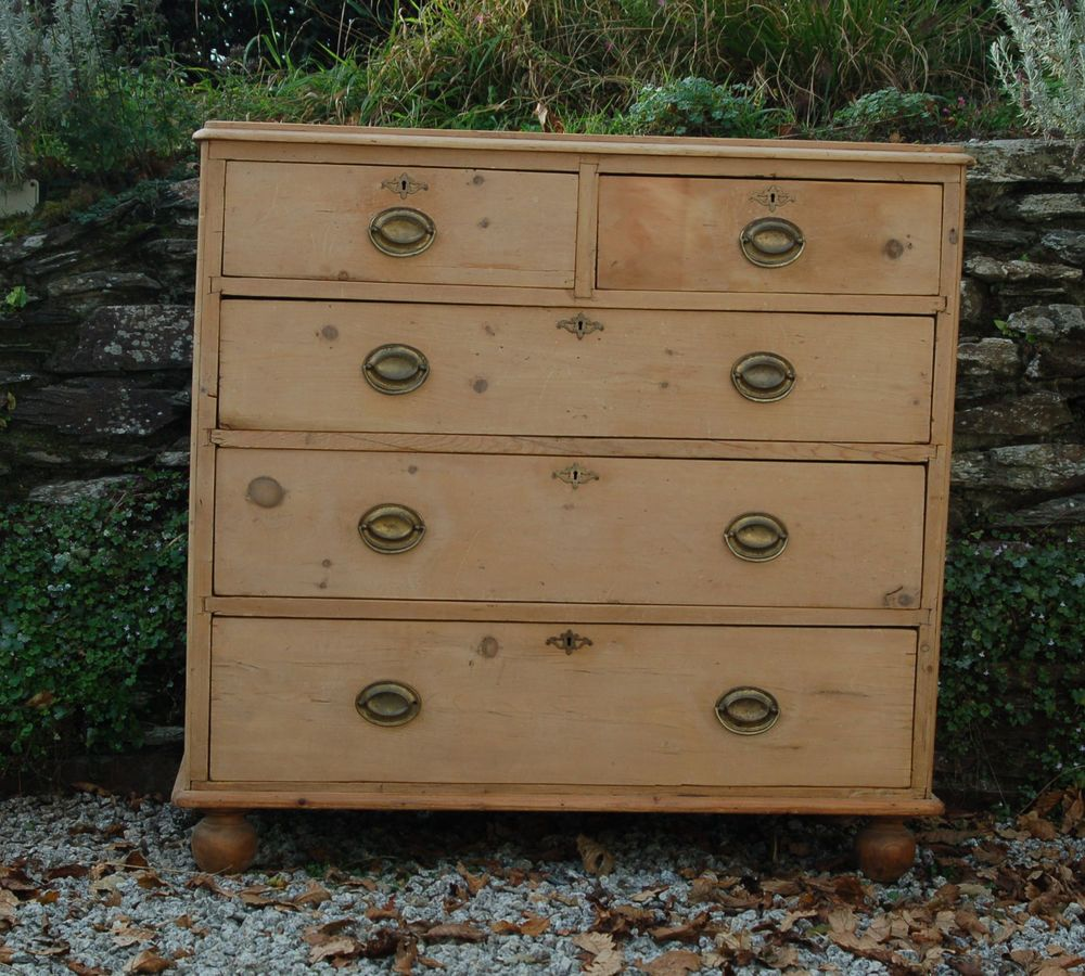 Victorian Pine Chest Of Drawers Details About Pretty Antique Victorian Bleached Pine Chest Of