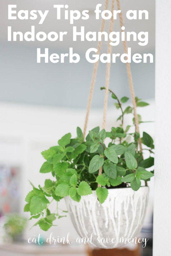 Easy Indoor Hanging Herb Garden- Eat, Drink, and Save Money