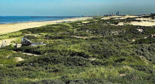 Scheveningse duinen&strand.....