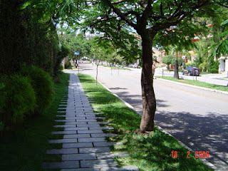 calçadas verde, uma boa ideia!