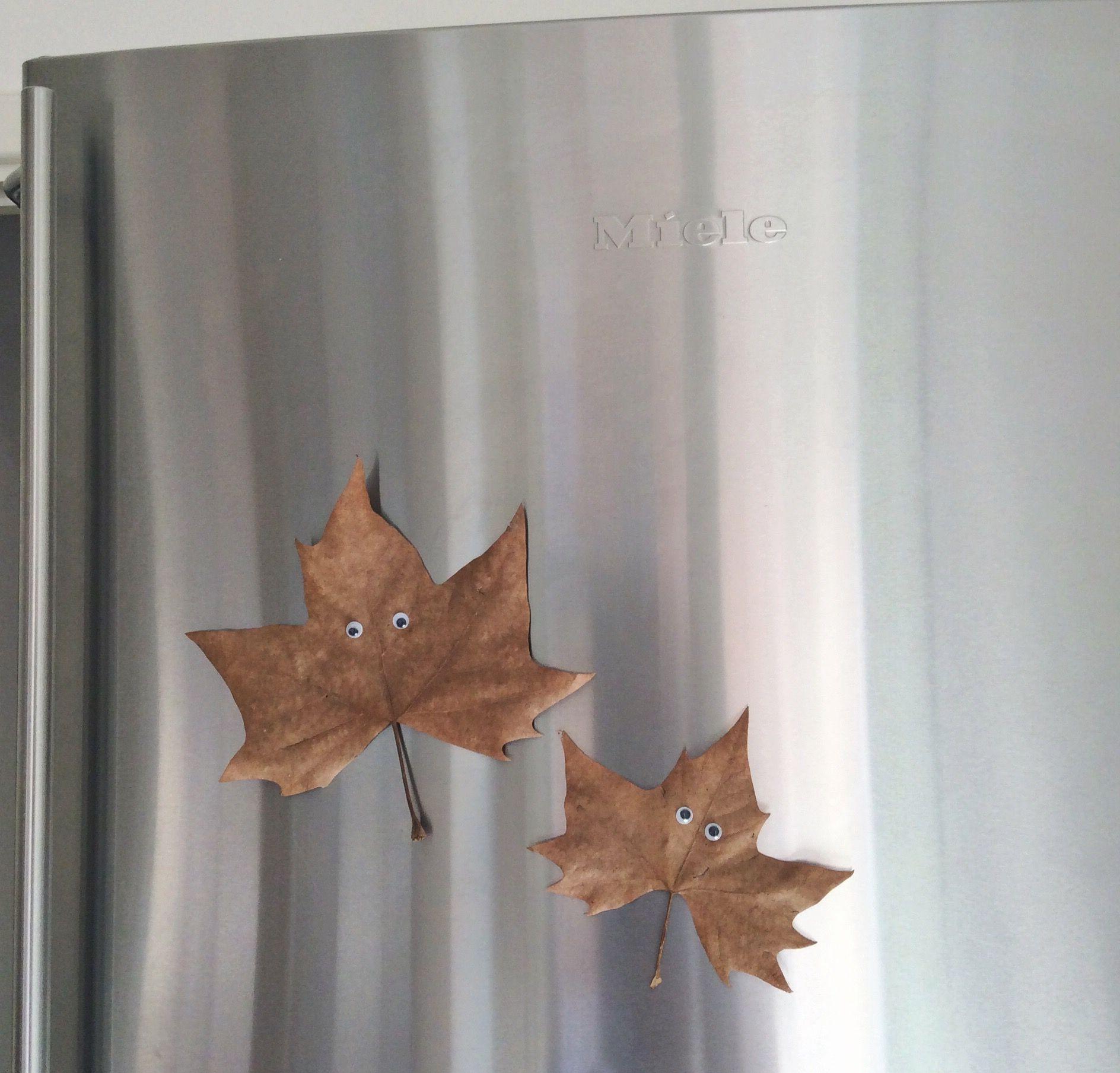 mommo design: DESIGNTIME - Fall crafts - DIY leaves magnets