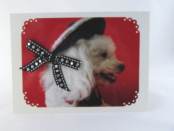 Dog Photo Silhouette Greeting Card Miniature Poodle by lillyzcardz, $4.00