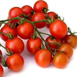 Sweet Baby Girl Cherry Tomato Plant Cherry Tomato Plant Tomato Plants For Sale Cherry Tomatoes