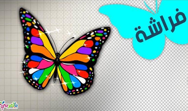 رسم فراشة وتلوينها تعليم الرسم للاطفال Designs To Draw Drawing For Kids Graphic Design