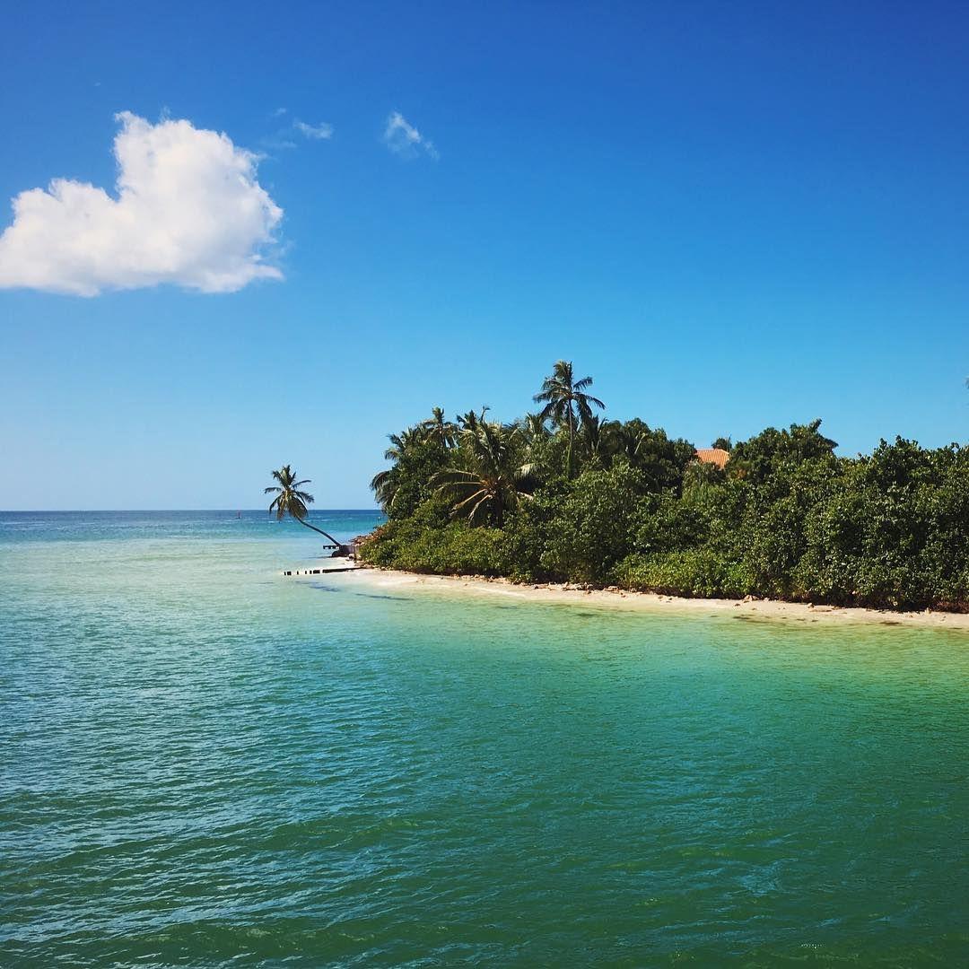 This is Paradise. Gordon Pass Naples, FL. Naples