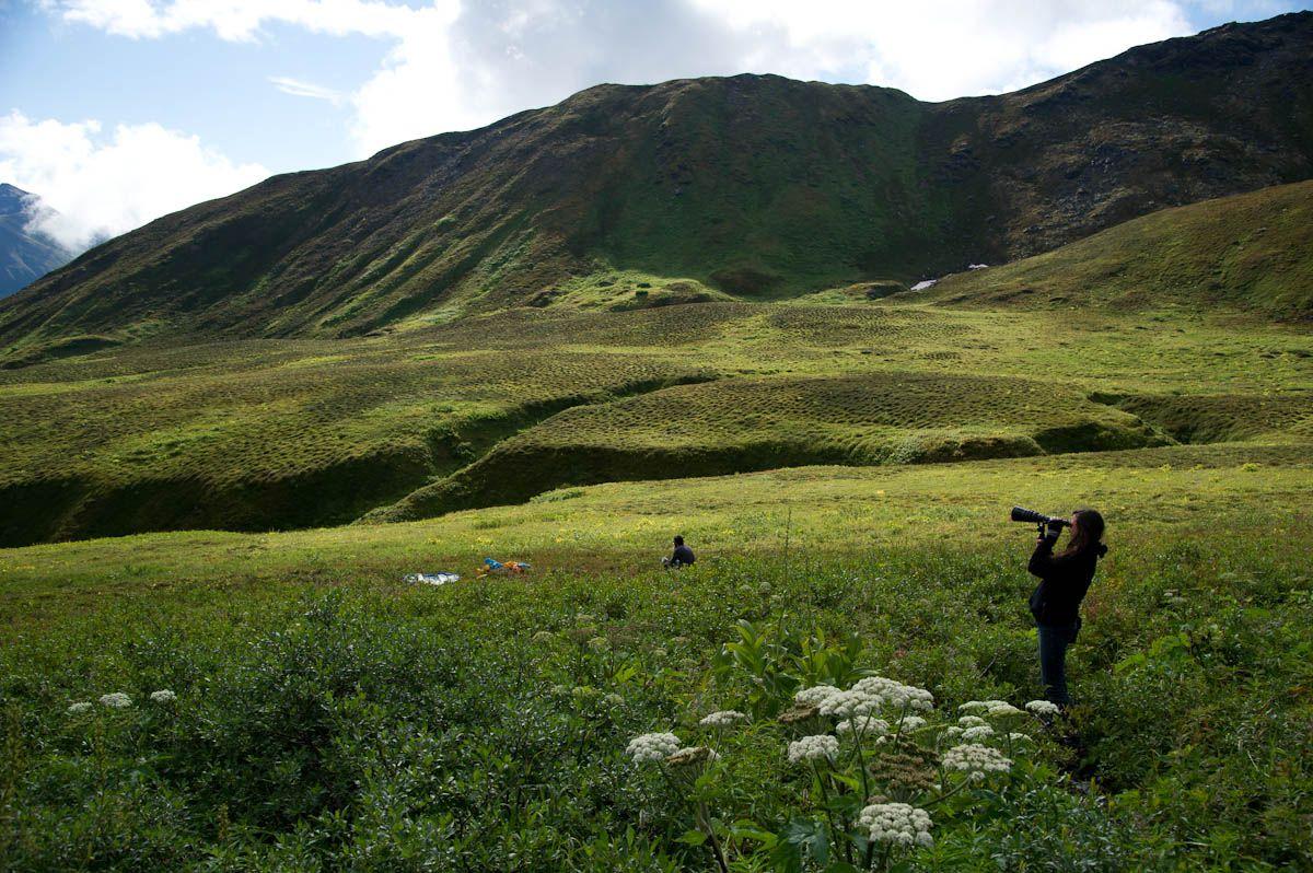 Alaska matanuska susitna county talkeetna - Hatcher Pass Talkeetna Mountains Matanuska Susitna Borough Alaska Hatcher Pass Is A