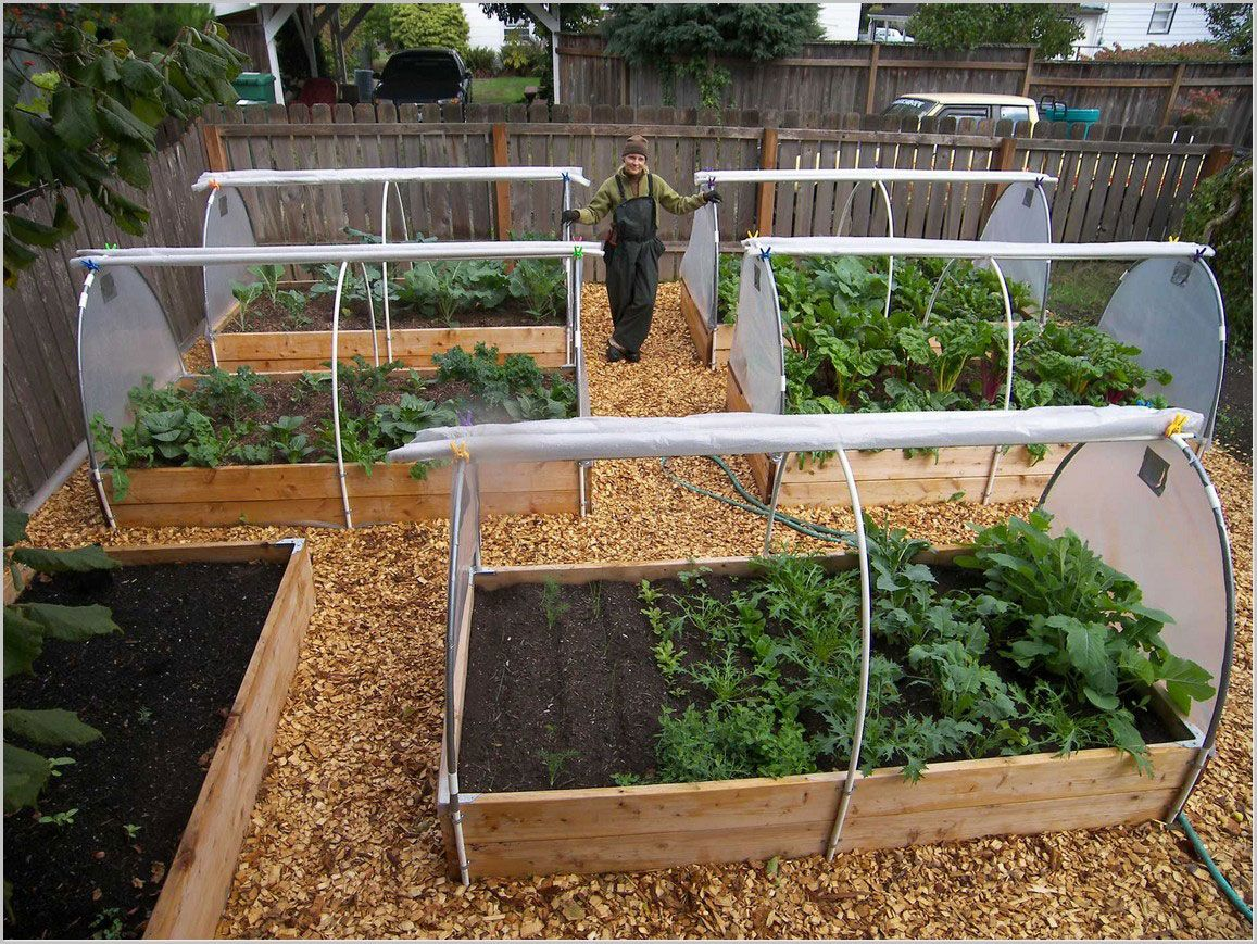 Garden bed with trees  Image result for raised garden beds landscape plans greenhouses