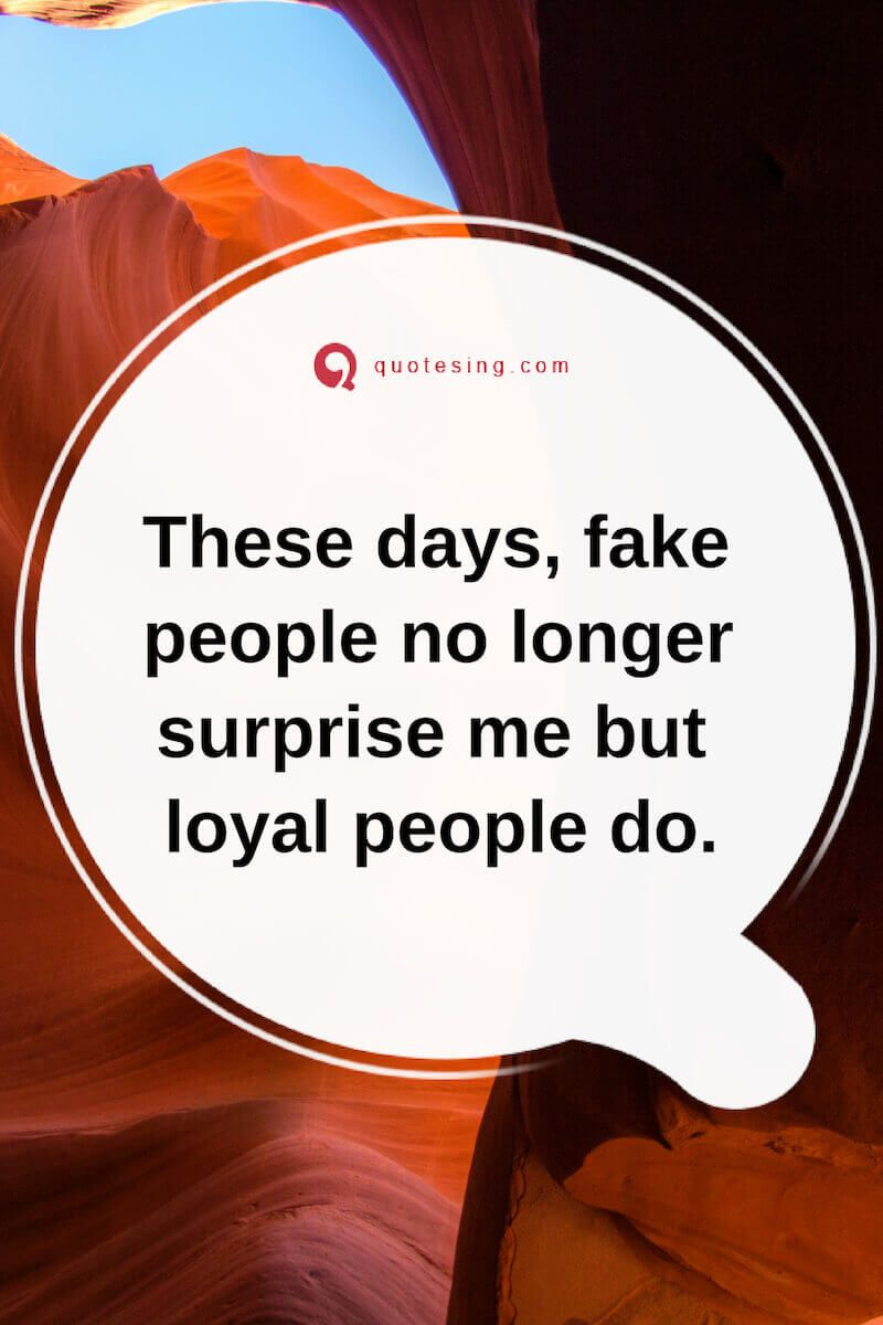 Pin By Mcopeland On Positive Promotions In 2021 Fake People Quotes People Quotes Inspirational Quotes With Images