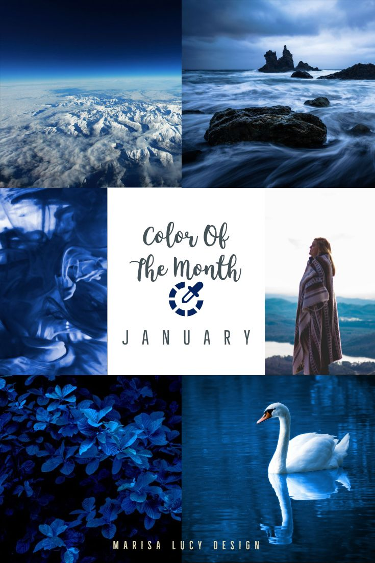 Color Of The Month - January | Color, Blue colour palette ...