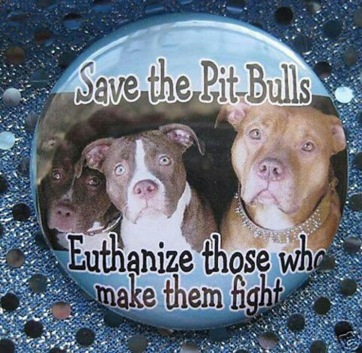save the pit bulls, euthanize those who make them fight