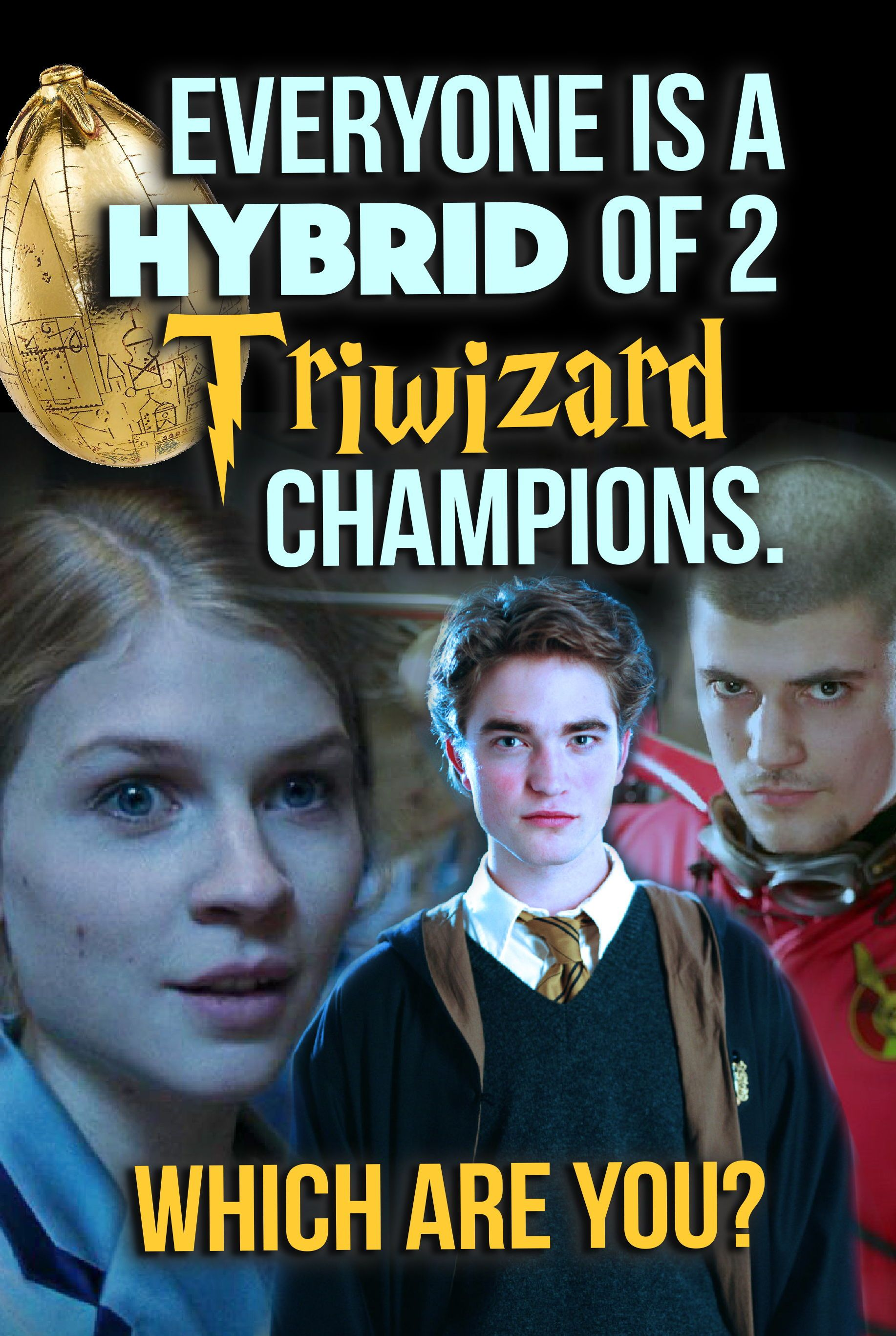 Quiz Everyone Is A Hybrid Of Two Triwizard Champions Which Are You