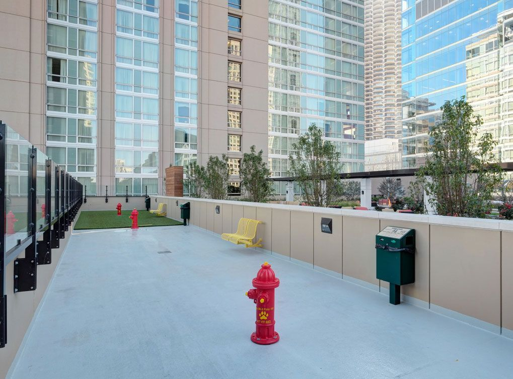 Image result for apartment dog run river north