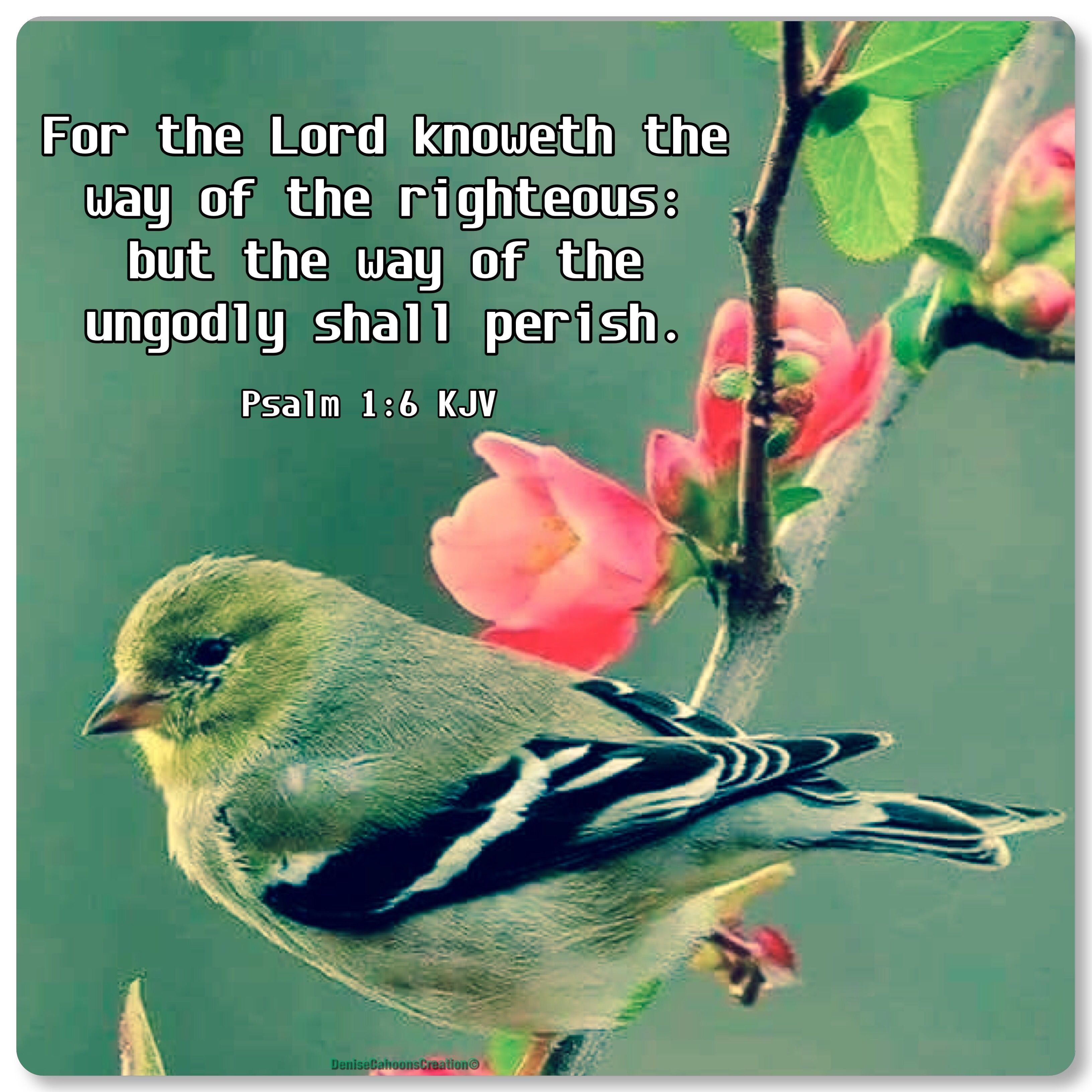 Psalm 1:6 KJV For the Lord knoweth the way of the righteous: but the ...