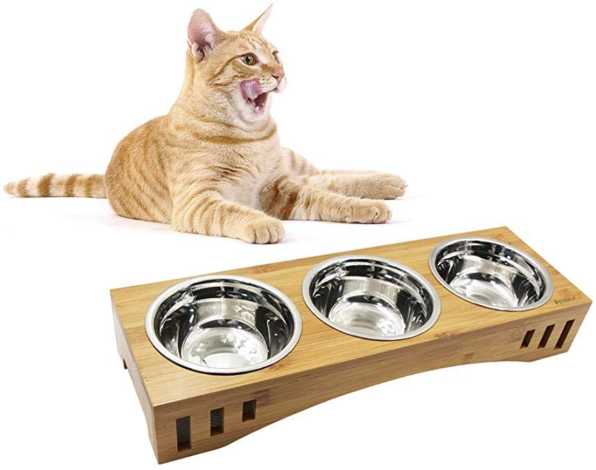 Petilleur Wooden Stand Pet Bowls Raised Cat Bowls With Bamboo Stand For Cats And Puppy Review With Images Pet Bowls Cat Bowls Happy Kitten