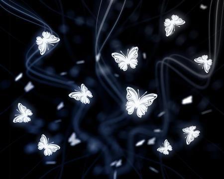 Butterflies at Night   Butterflies   Pinterest   Butterfly ...