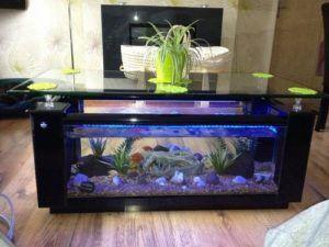 elite black fish tank