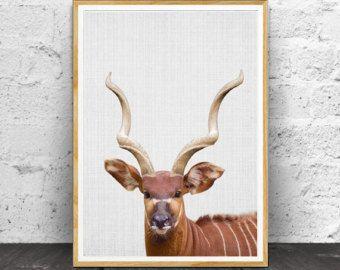 Rhino Wall Art Print Safari Nursery Decor African by LILAxLOLA