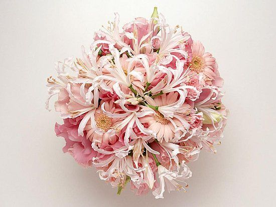 explore light pink weddings pictures of flowers and more