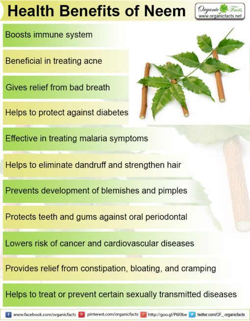 Some Of The Most Important Health Benefits Of Neem Include