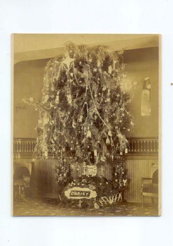 243b Pentz York Pa Christmas Tree Photo 14 1apl Cabinet Cards