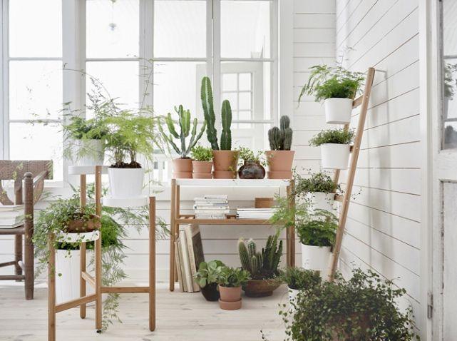 L Inspiration Du Jour Les Nouveautes Ikea De Fevrier Elle Decoration Ikea Support Pour Plante Jardin Interieur
