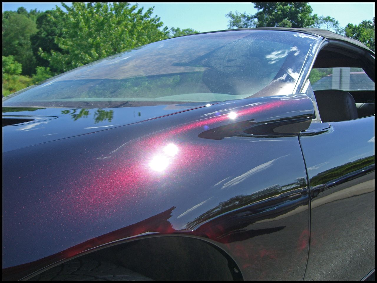 Pin By Ronni Boyd On Colors To Paint The Firebird Car Spray Paint Car Painting Car Inspiration