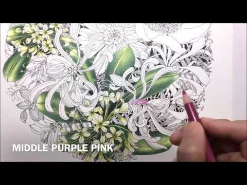 Flower Coloring Process 2 Floribunda Coloring Book Youtube Flower Drawings With Color Coloring Books Flower Drawing
